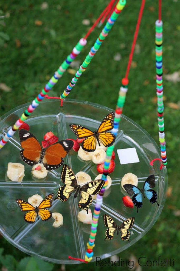 Easy Kid Craft Butterfly Feeder