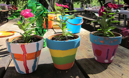Ceramic pots are cheap and easy to find and any type of acrylic or craft paint works just fine on them. Then you can add an easy grow flowers and vegetable ... & 5 Garden Projects For You and Your Kids | Entertrainment Junction
